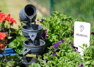 Community Sensory Garden Trim Opening (6)